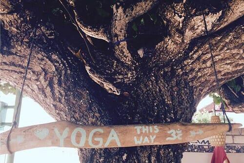 beratung für yogalehrer